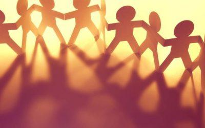 NGOs und Stiftungen
